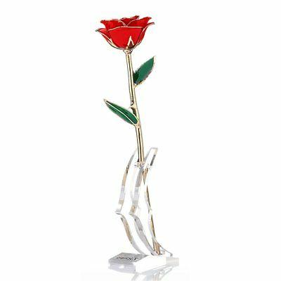 ZJchao Long Stem Dipped 24k Gold Rose in Gift Box with Clear
