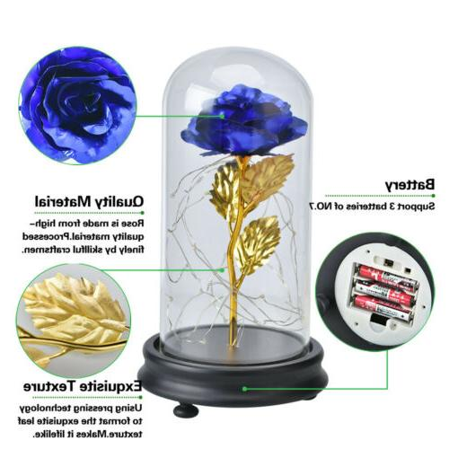 WR Gold Plated Rose Glass Lamp Golden Flower Christmas For