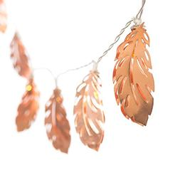 Ling's moment Rose Gold Feather Copper Metal 5Ft 10 LED Lant